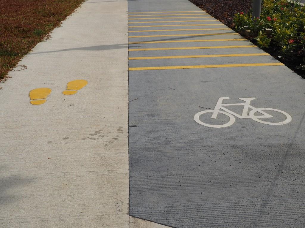 Дальше к отелю Марина бэй и садам ведут две дорожки - для пешеходов и велосипедистов