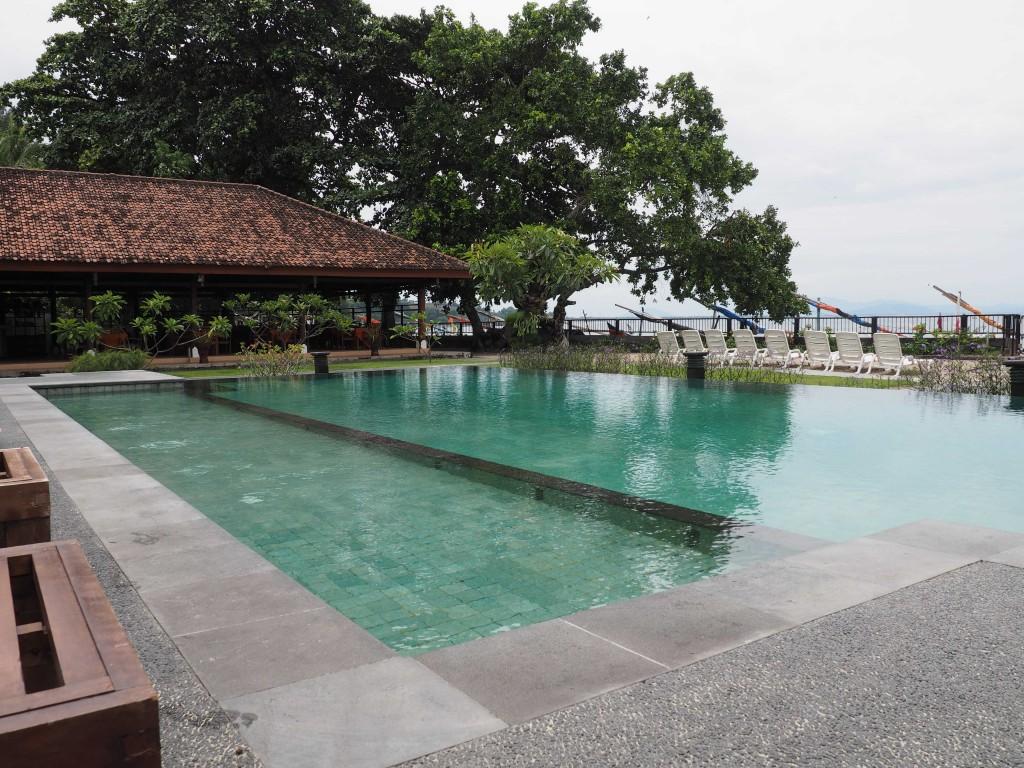 Утром территория отеля нас очаровала - прекрасный сад и бассейн, довольно чистый берег и море.