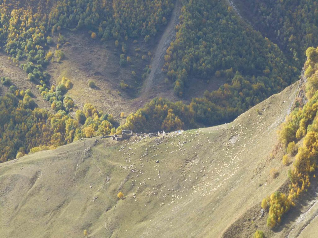 Вид от арки, внизу пасутся стада овец