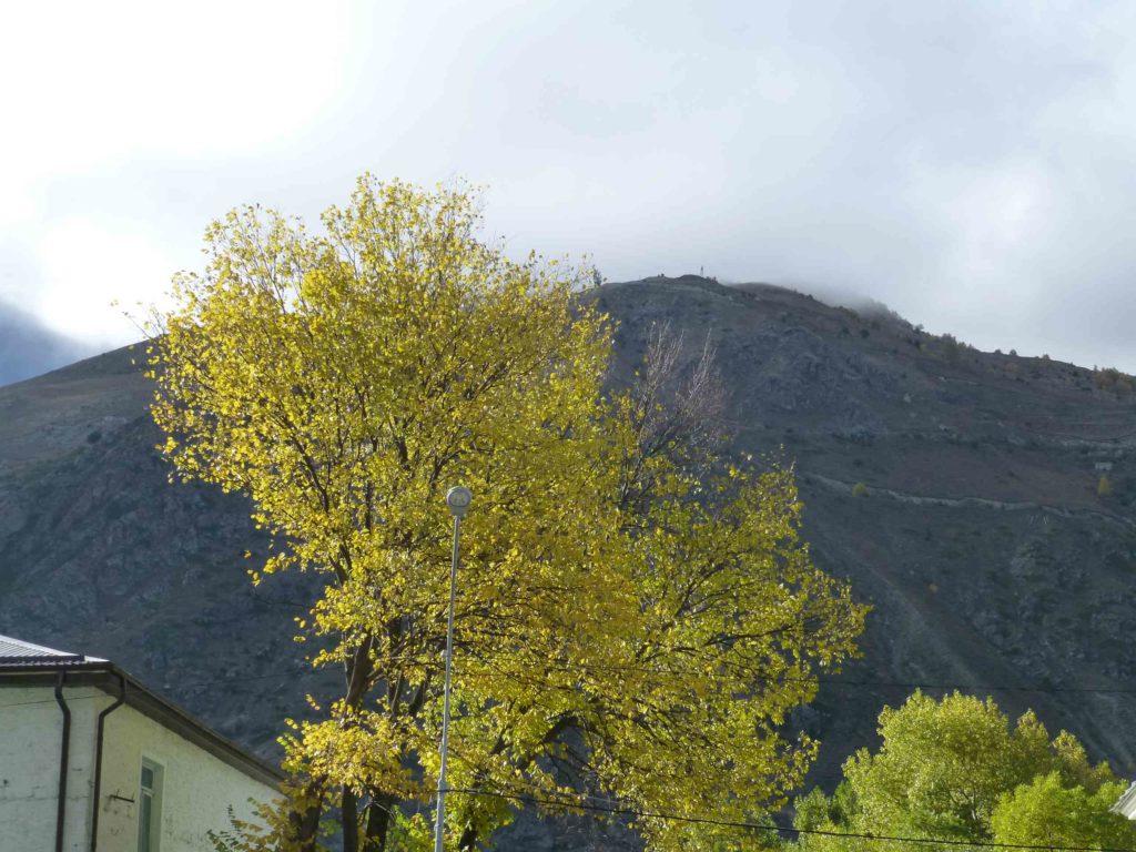 Та самая гора, в которой вольфрамовый рудник