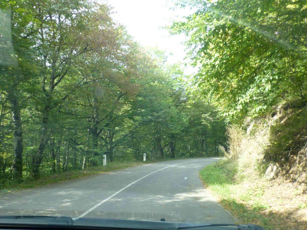 Дорога в Агарцин