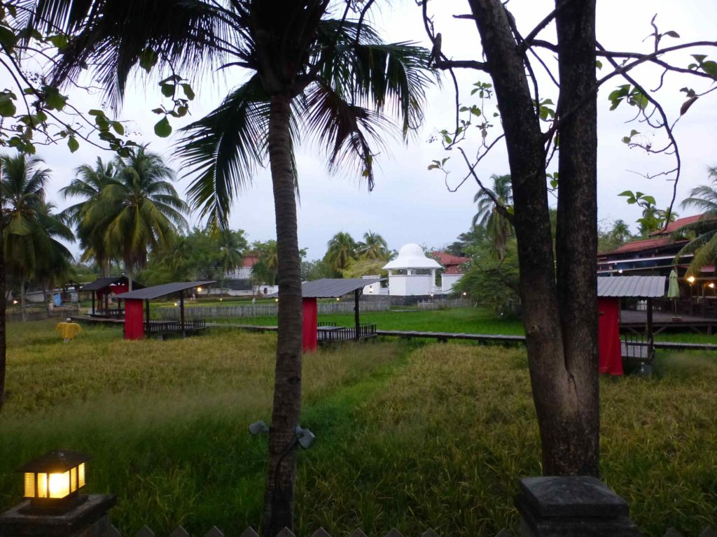 Территория музея риса
